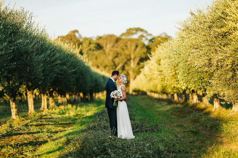 Galante vineyards wedding