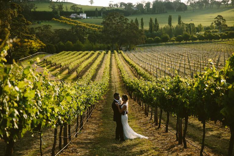 Centennial Vineyards wedding